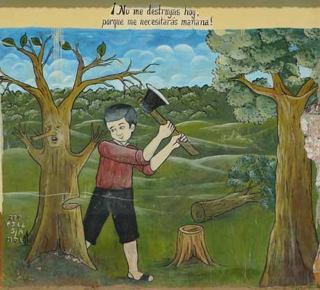 lagunas_peru_save_tree